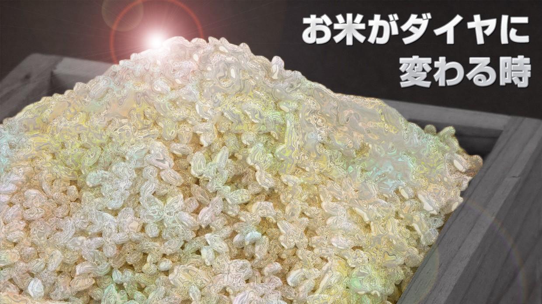 お米がダイヤに変わる時